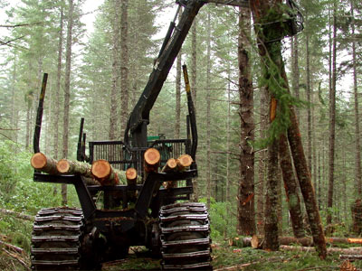spare heavy machinery parts for the forestry industry
